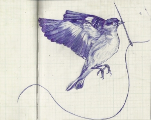F_sewing bird