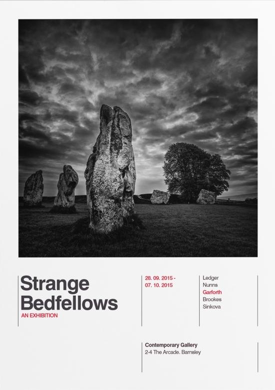 Strange Bedfellows Flyer-4