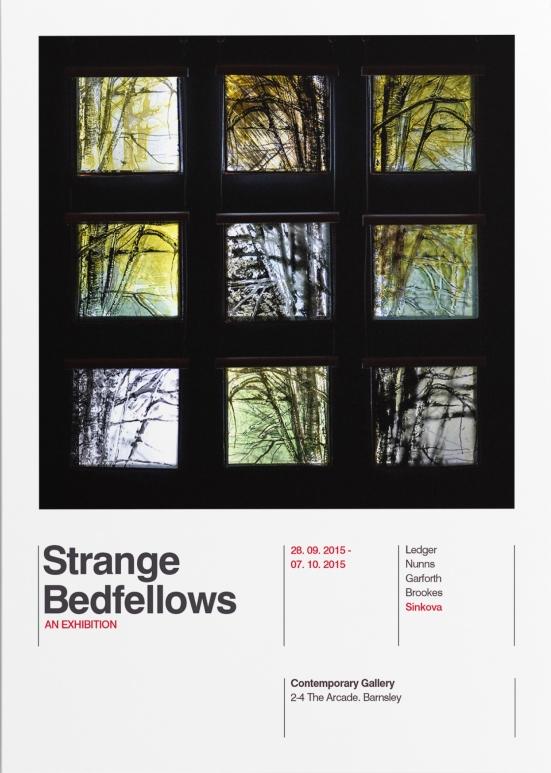 Strange Bedfellows Flyer-7